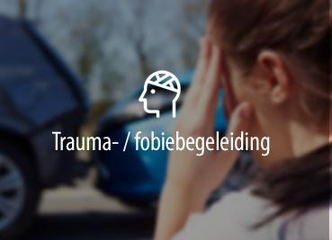 traumabegeleiding